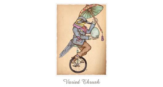 varied thrush card