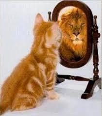 Ego – Definición de Ego, Concepto de Ego, Significado de Ego