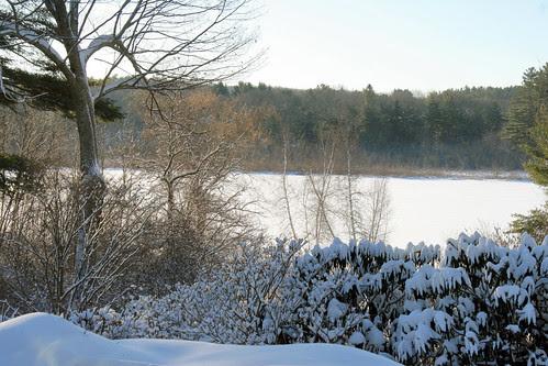 winter scene 033