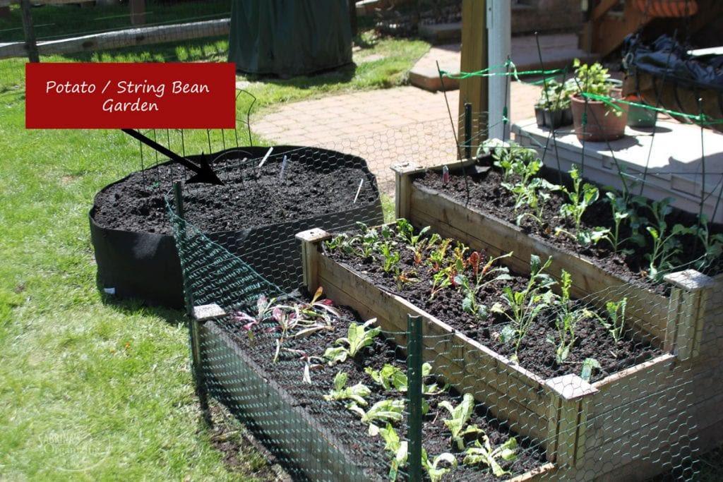 Fun Cheap and Easy Practical Outdoor Gardening Ideas ...