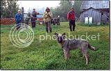 photo dogsavedgirl-1_zps559dbf54.jpg