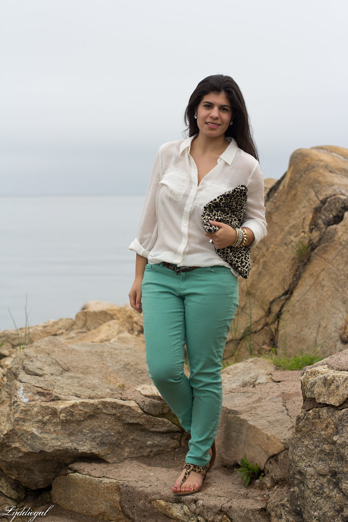 mint and leopard-1.jpg