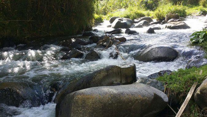bosques rios presion demografica