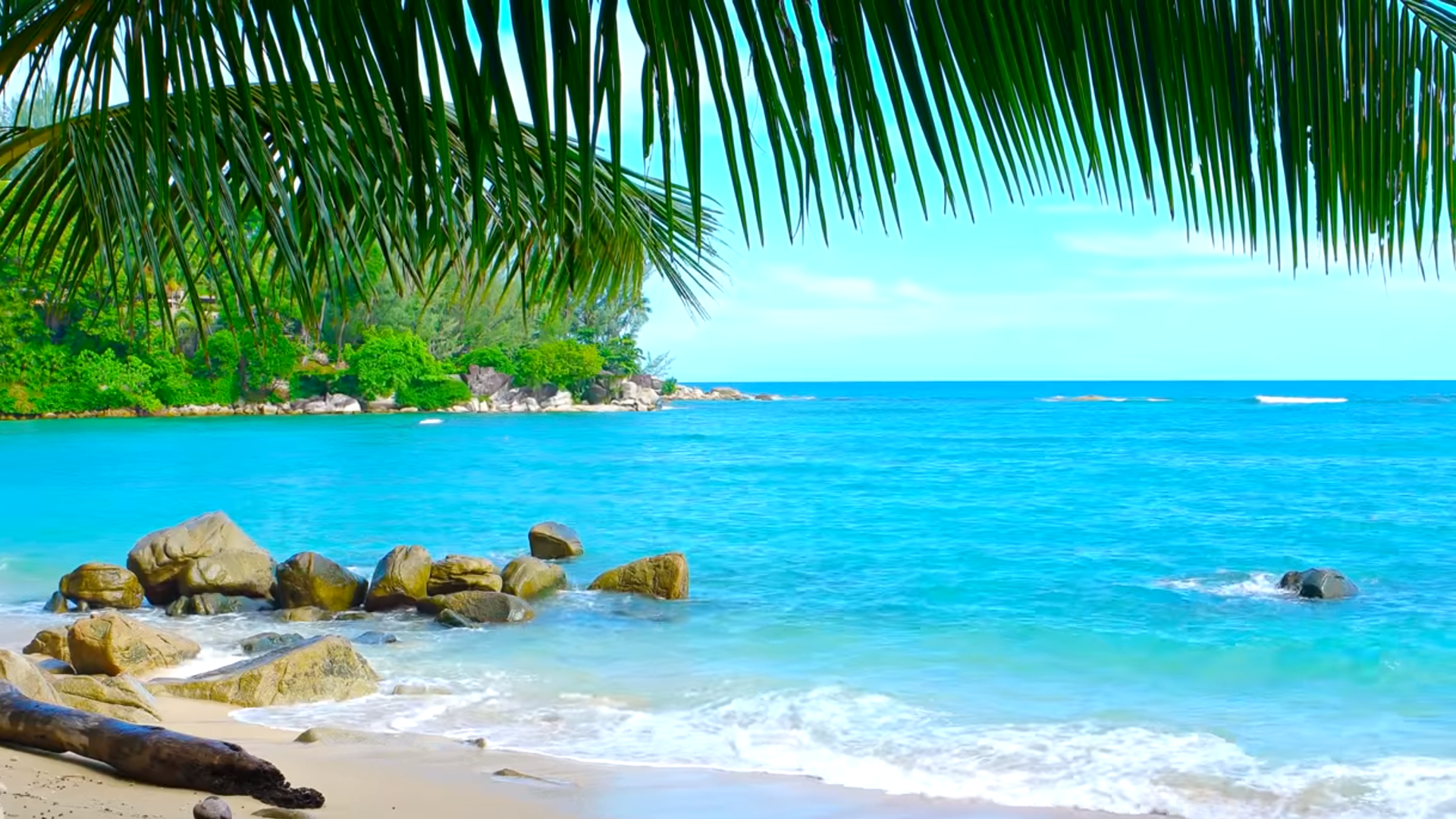 10 Best Tropical Beaches You Must Visit in Your Lifetime