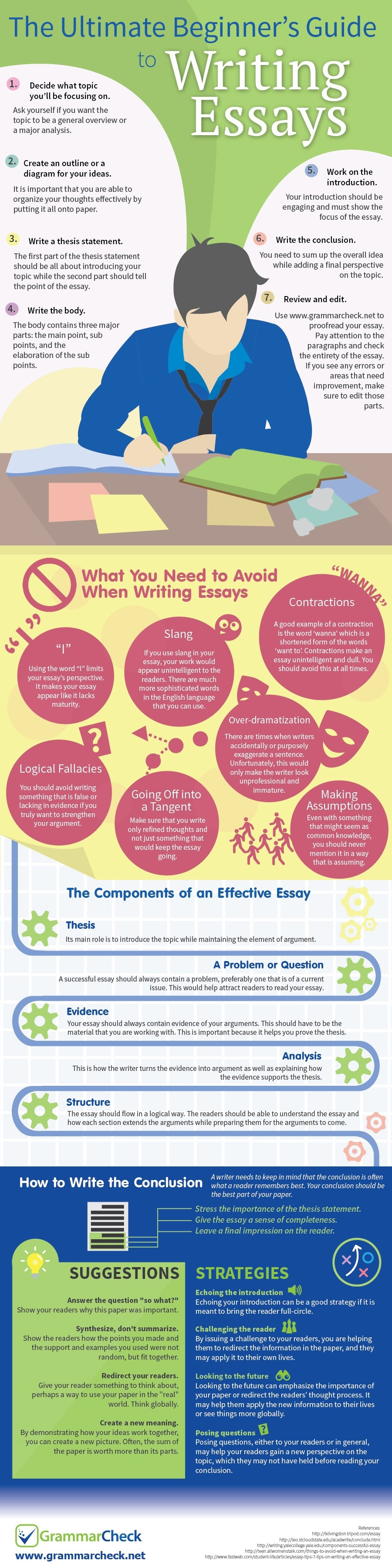 The Ultimate Beginner's Guide to Writing Essays (Infographic)