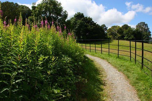 On the path to Wray Castle