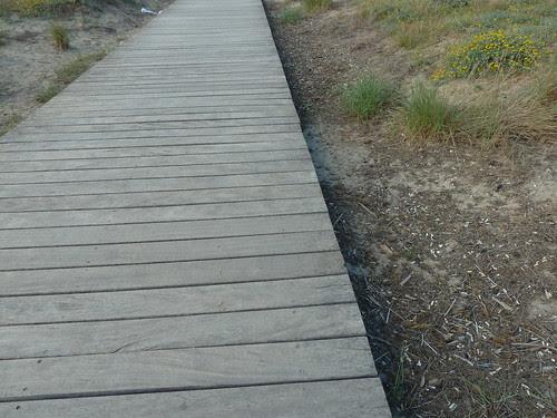 un camí de fusta