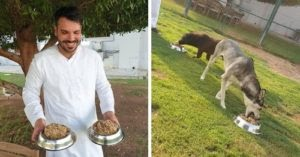 5-Star Chef Turns Leftovers Into Food For Shelter Dogs