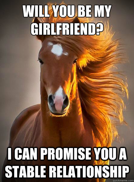 Will You Be My Girlfriend I Can Promise You A Stable Relationship