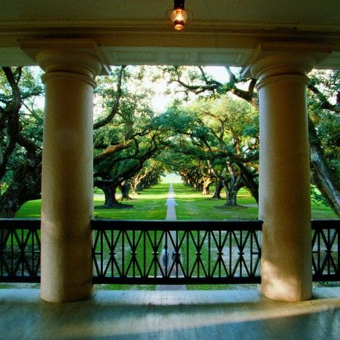 Oak Alley Plantation...quite a view!