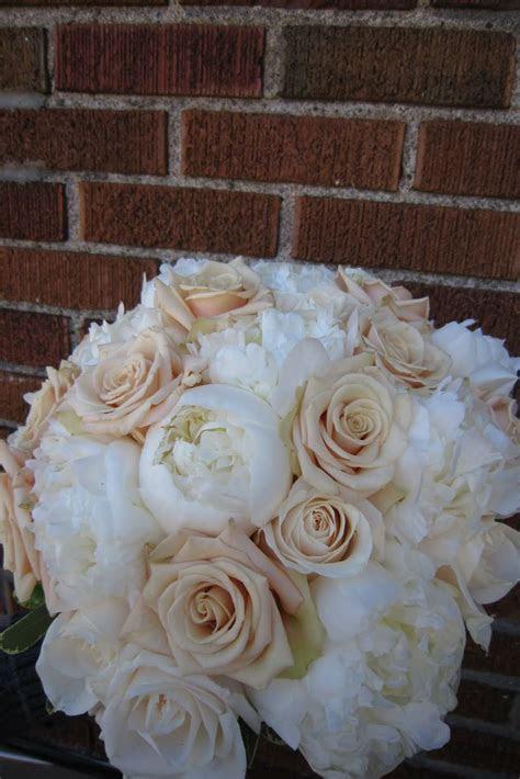 "Champagne ""Sahara"" roses   Wedding   Pinterest   Rose"