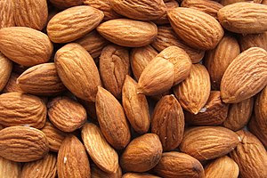 Shelled almonds (Prunus dulcis)