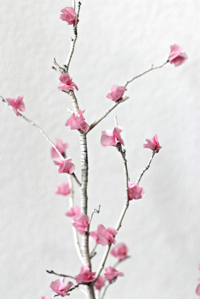 Flower Blossom Branches pink