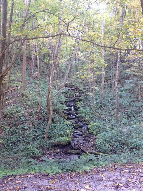 One of my favorite spots between Ohiopyle and Confluence on the GAP