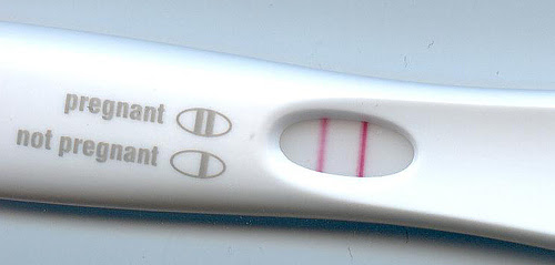 File:Pregnancy test result.jpg