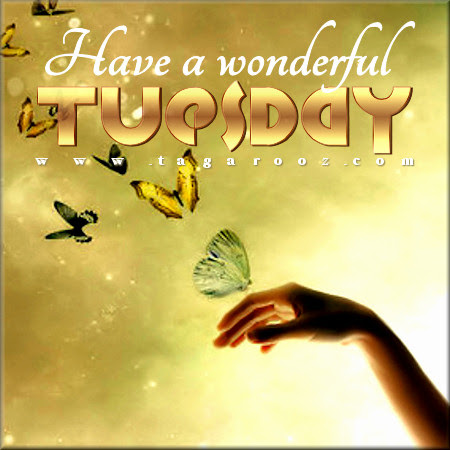 Have A Wonderful Tuesday Comments Graphics Images Memes Pics