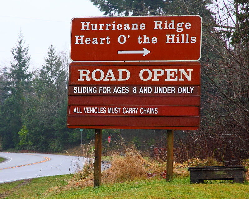 IMG_9056 Hurricane Ridge Road in Winter, Olympic National Park