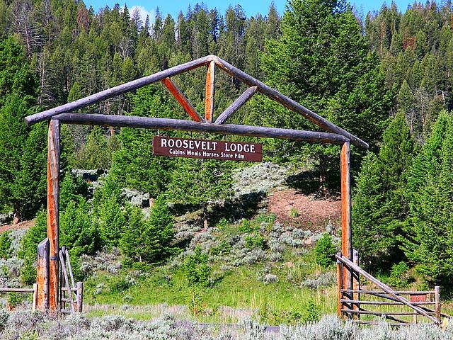 IMG_9629 Roosevelt Lodge