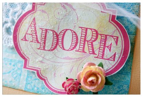 Adore closeup