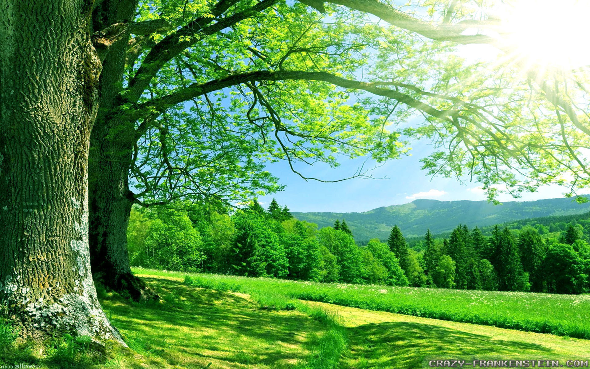 28 Nature Wallpaper Hd 1366x768 Free Download Basty Wallpaper