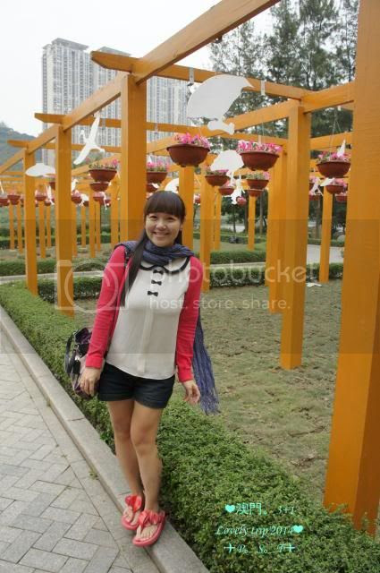 photo 50_zpsfafd39d4.jpg