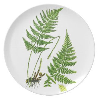 Antique Green Fern Botanical Art Illustration Party Plates