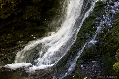 From Cape Enrage to Fundy National Park