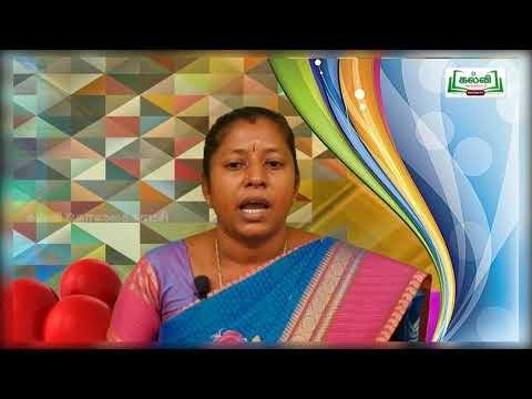 4th Social Science Bridge Course வம்சாவள கண்டங்கள் நாள் 9, 10 Kalvi TV