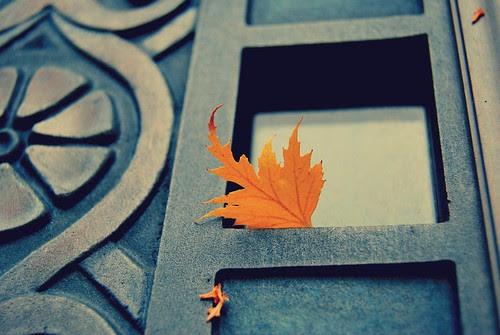one leaf. by mrs. french.