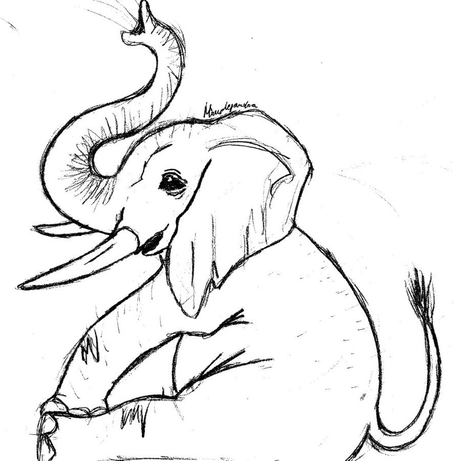 Free Line Drawing Of Elephant, Download Free Clip Art ...