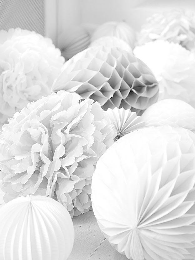 White poms
