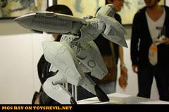 MGS-RAY-HKV-1