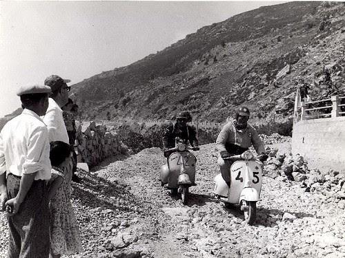 Colombini in Sardegna