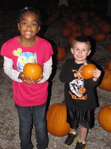 Cutest pumpkins!