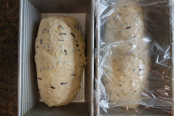Wild Rice and Onion Bread Karen's Kitchen Stories