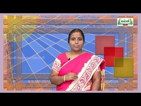 8th Social Science Bridge Course இடைக்கால இந்திய வரலாற்று ஆதாரங்கள் நாள் 1&2  Kalvi TV