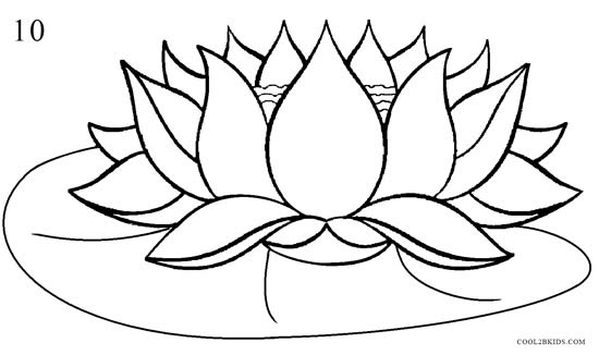How to Draw Lotus Flower (Step by Step Pictures)   Cool2bKids