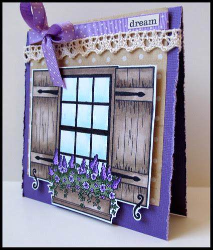 SA window box 2