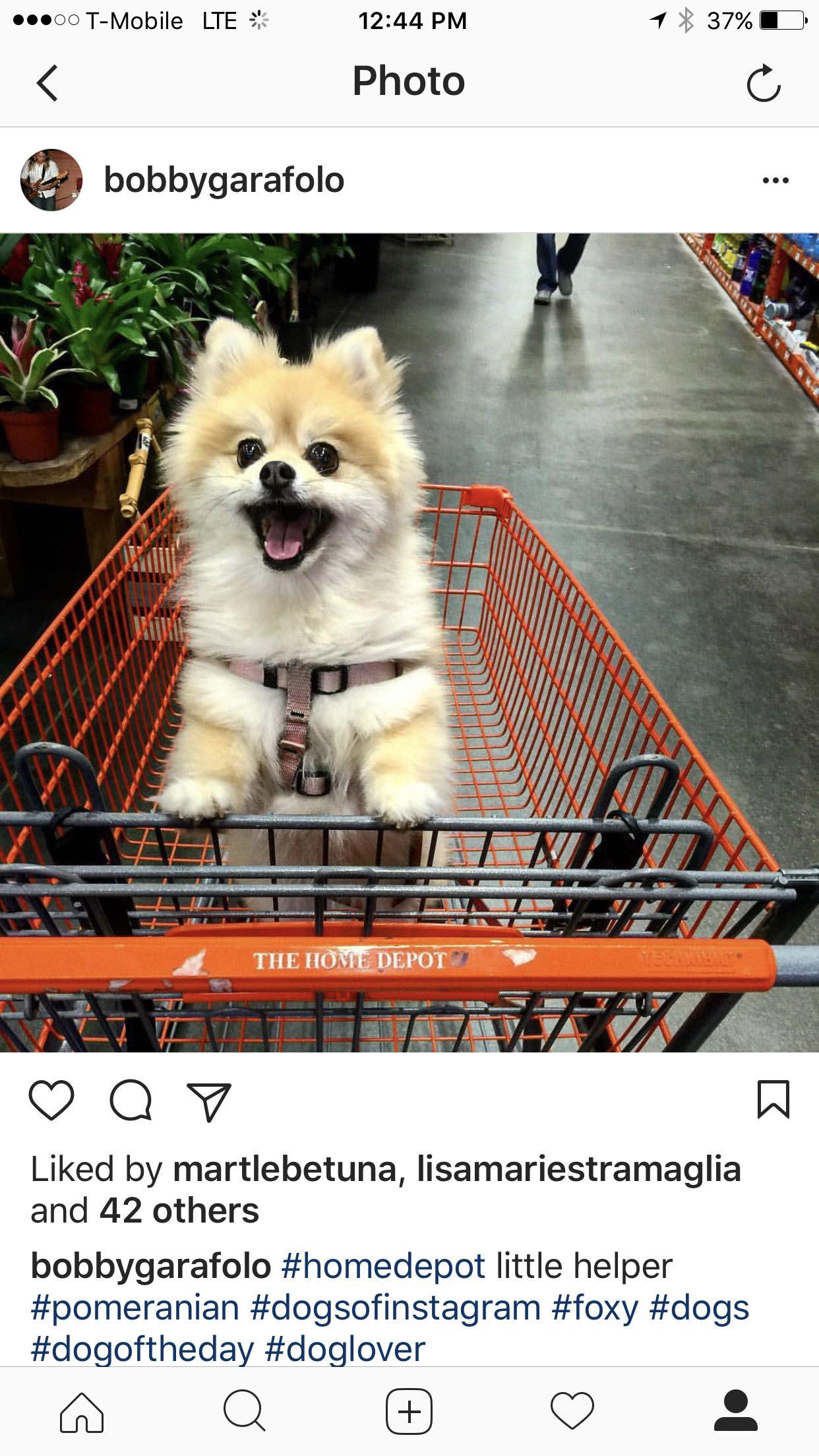 Home Depot s cutest employee pics