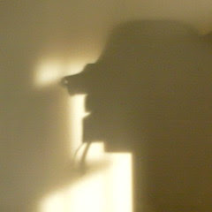 Strange shadows on the wall - 1