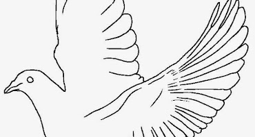Gambar Burung Merpati Yang Belum Diwarnai Crimealirik Page