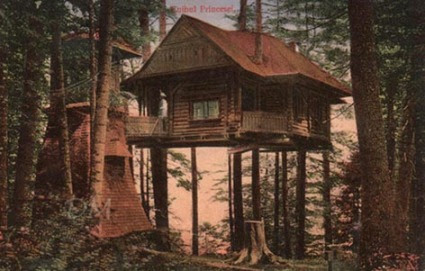 The Princess' Nest, Sinaia - DM collection