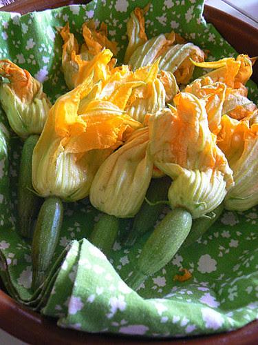 petites courgettes fleurs.jpg