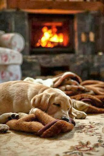 The essence of coziness...yessss!!!