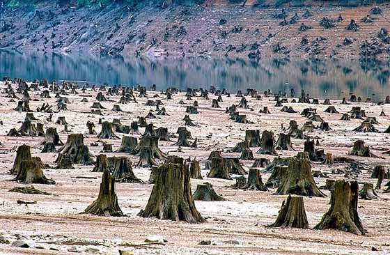 20-photos-choquantes-des-humains-detruisant-lentement-la-planete-terre-12