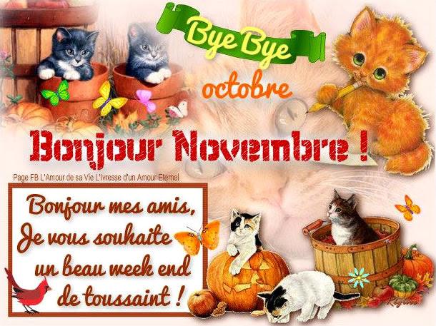 Novembre image 8