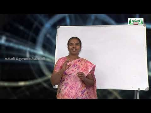 NEET  JEE Physics Kinematics இயக்கவியல் Kalvi TV