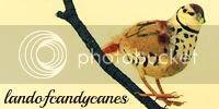 landofcandycanes