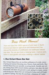bee home