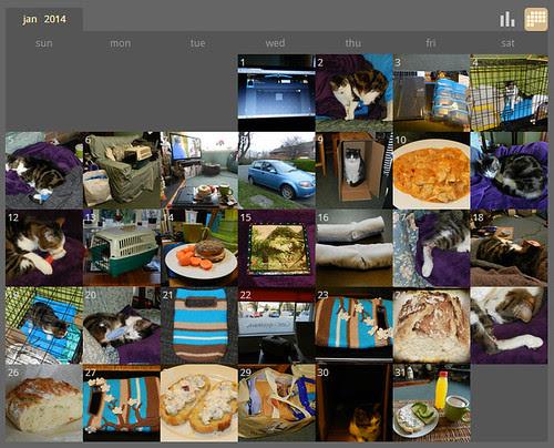 My ShutterCal - January 2014